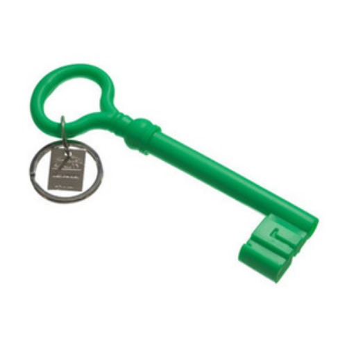 Reality Keychain Key  Green